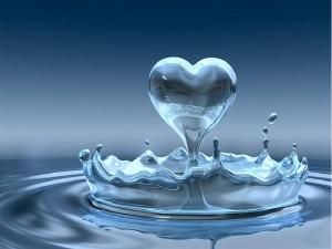 Wasserherz